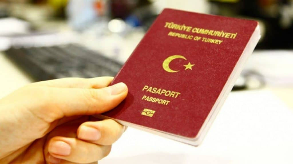 Other Ways to Apply For Turkish Citizenship